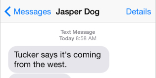 Text from Dog: Time to visit the neighbors