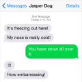 Jasper text snow nose