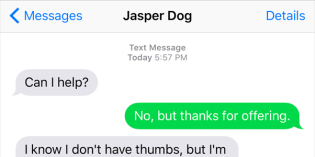 Text from Dog: Can I help?