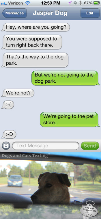Text from dog: You were supposed to turn right back there. That's the way to the dog park!