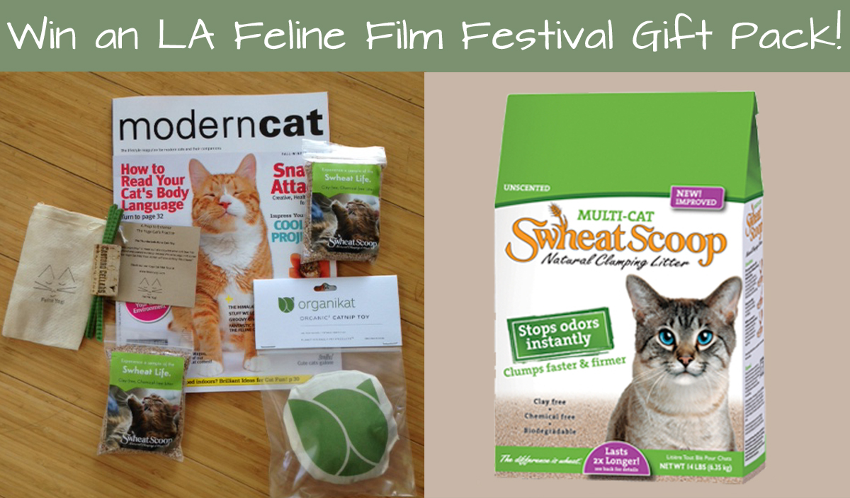 Win an LA Film Festival Gift Pack