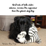 Haiku by Dog: Silence