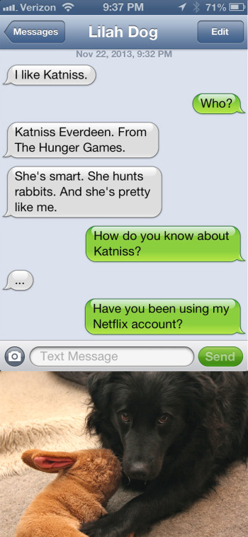 Text from Dog: I like Katniss.