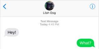 Text From Dog: You Forgot Something