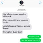 Text From Dog: Super Dog