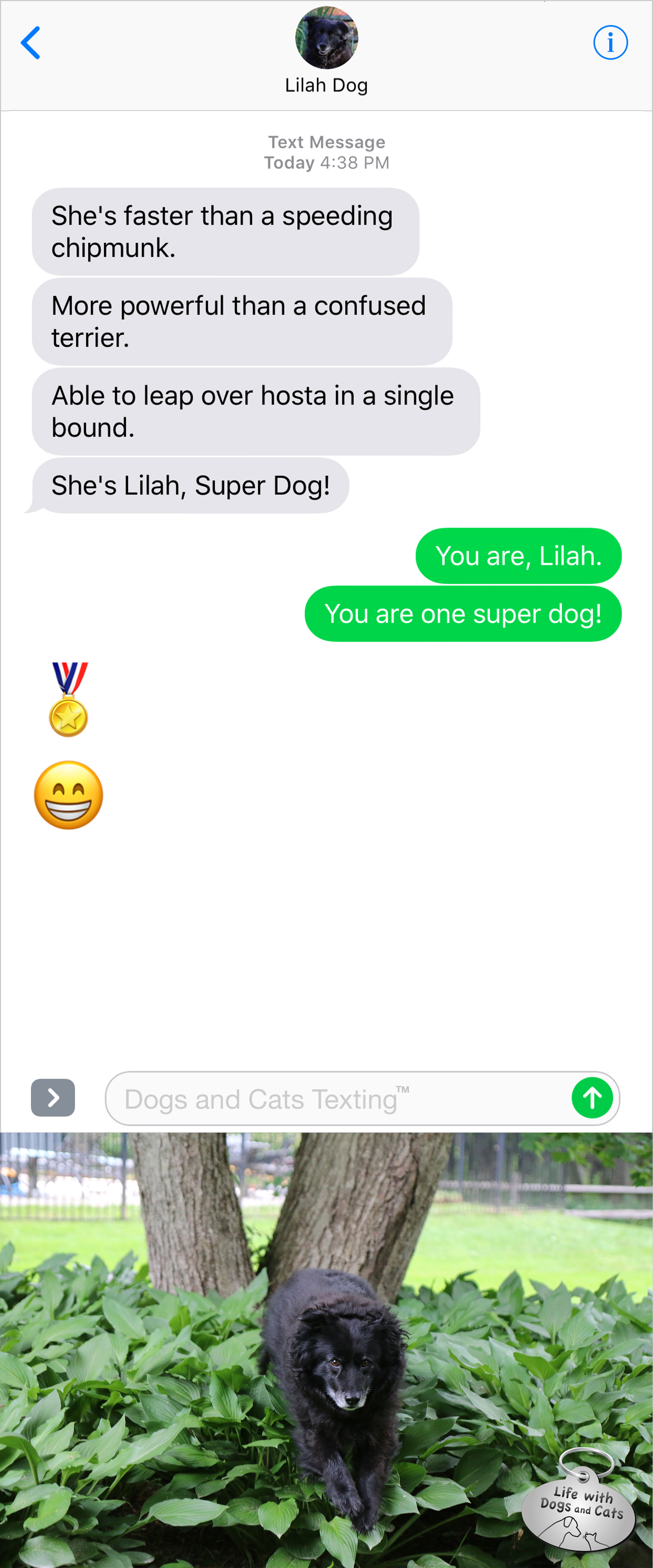 #TextFromDog She's faster than a speeding chipmunk. More powerful than a confused terrier. Able to leap over hosta in a single bound. She's Lilah, Super Dog! Me: You are, Lilah! You are one super dog!