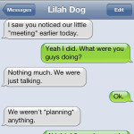 Text from Dog: The meeting