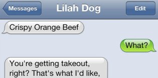 Text from Dog: Takeout