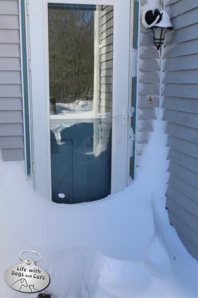 Snow piled against the back door with Lilah's reflection.
