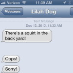 Text from Dog: Darn autocorrect!
