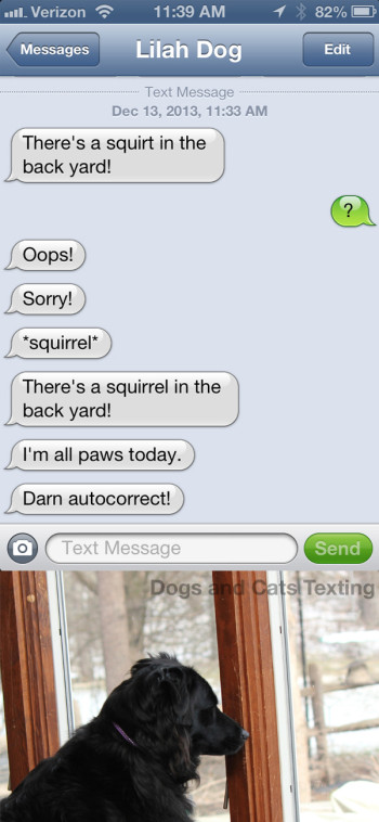Text from dog: There's a squirt outside! *squirrel Darn autocorrect!