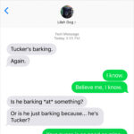 Text from Dog: To bark or not to bark