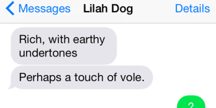 Text from Dog: Makes Scents, Sort Of