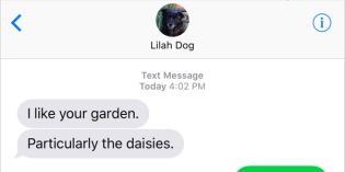 Text from Dog: Stop and smell the daisies