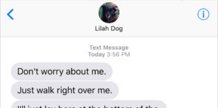 Text from Dog: Guilt trip