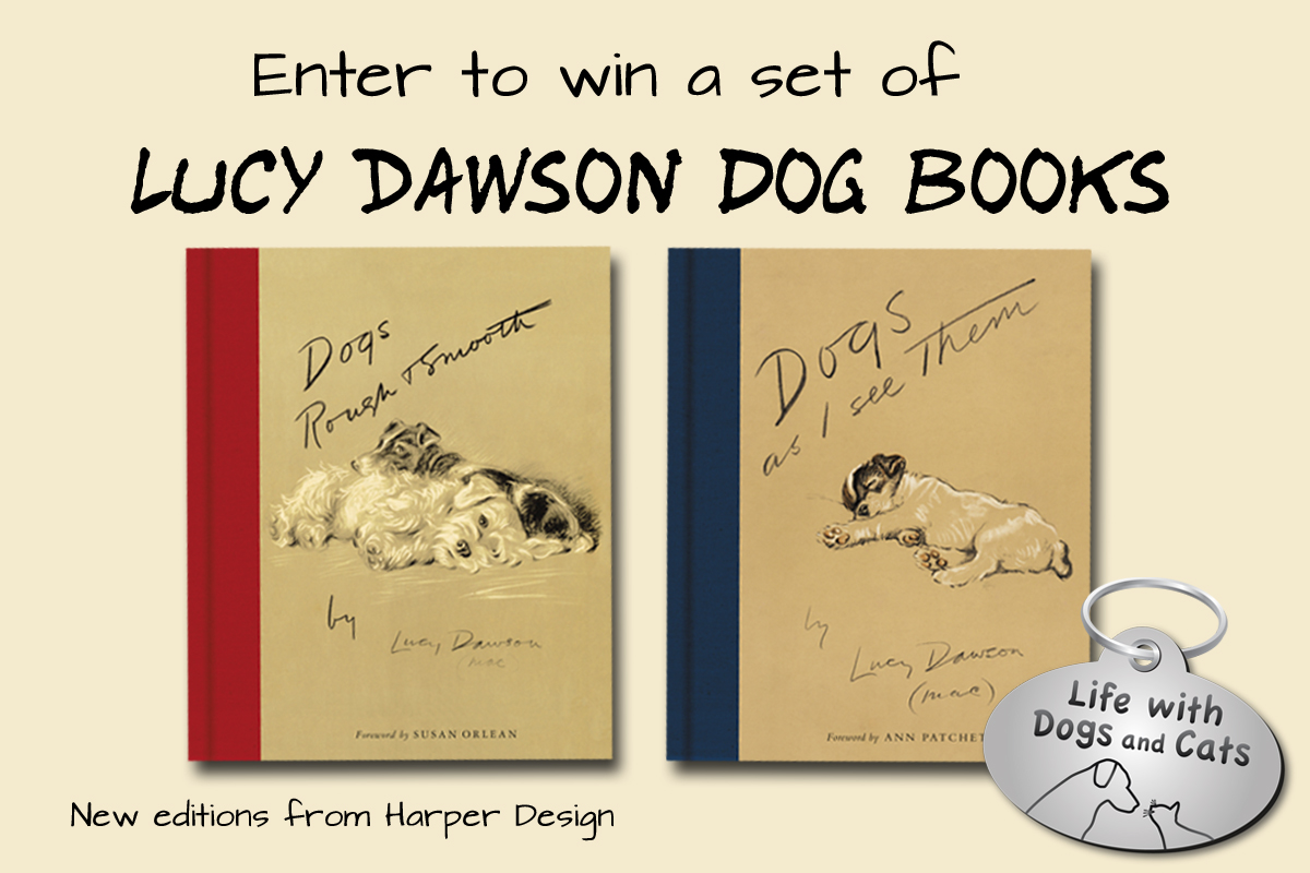 Enter to Win Lucy Dawson Dog Books