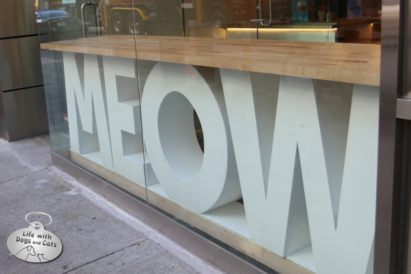 Meow Parlour storefront