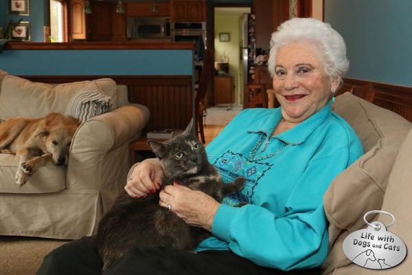 Athena the cat on Grandma's lap