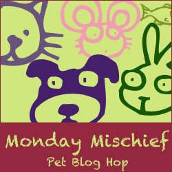 MondayMischief