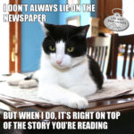 I Don't Always Lie on the Newspaper #MostInterestingCatInTheWorld
