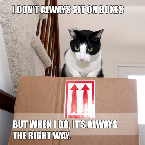 I don't always sit on boxes. But when I do, it's always the right way.