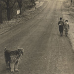 Photo: Two boys and a dog