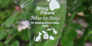 BlogPaws 2014 Nose to Nose Winners