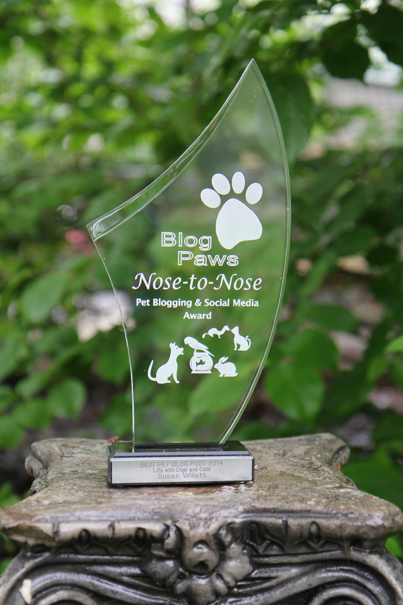BlogPaws 2014 Nose to Nose Award
