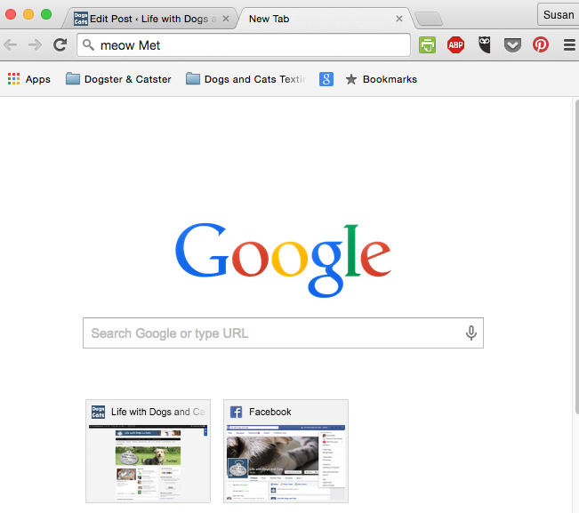 Boring old Google Chrome
