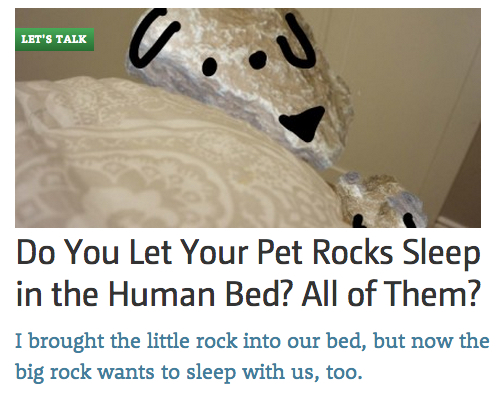 Do you let your pet rocks sleep in your bed?