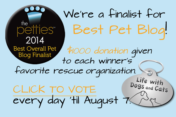 Vote for Life with Dogs and Cats for Best Overall Pet Blog at the Petties