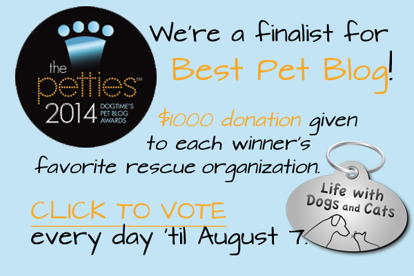 Please vote for Life with Dogs and Cats for Best Overall Pet Blog at the Petties!