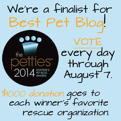 Please vote for us every day through August 7