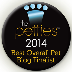 Life with Dogs and Cats: Finalist for Best Overall Pet Blog