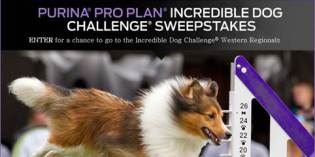 Enter to Win the Purina Pro Plan Incredible Dog Sweepstakes