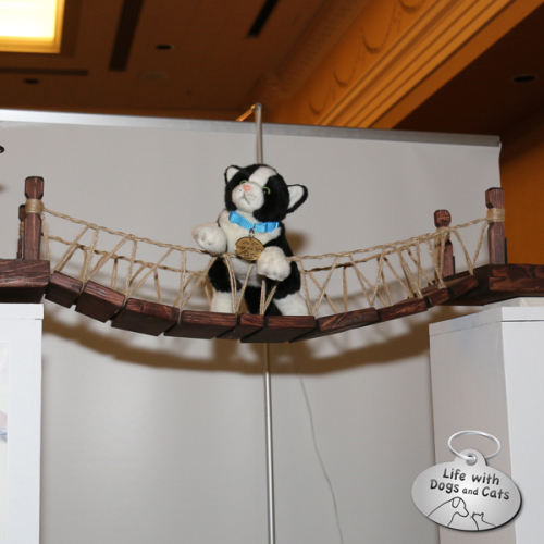 Rover poses on the Indiana Jones cat bridge by Catastrophic Creations.