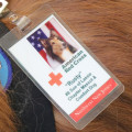 Somerset County 4H Fair: Lassie descendant Storm wears the ID tag from Rusty, his father, who, as an official Red Cross volunteer, comforted families after 9/11