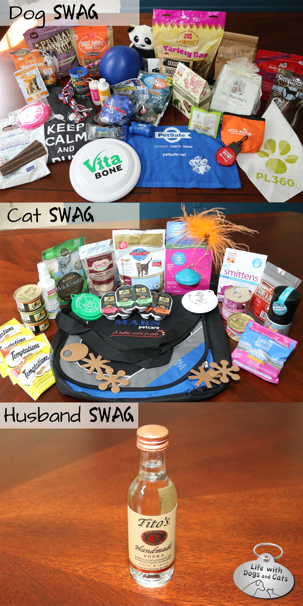 Dog swag, cat swag, husband swag
