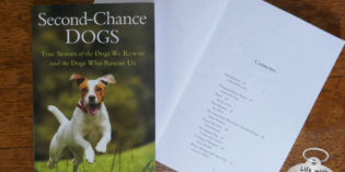 I'm Published In a New Book: Second-Chance Dogs