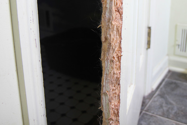 Shredded door close up
