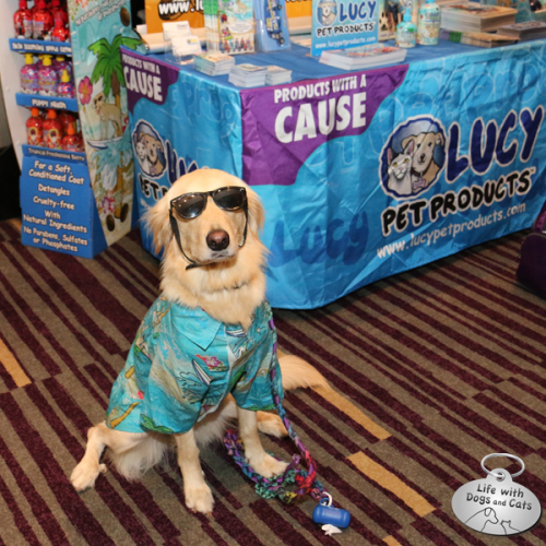 This cool dude (actually she's more of a dude-ette) is Surfin' Jack, mascot for Lucy Pet Products