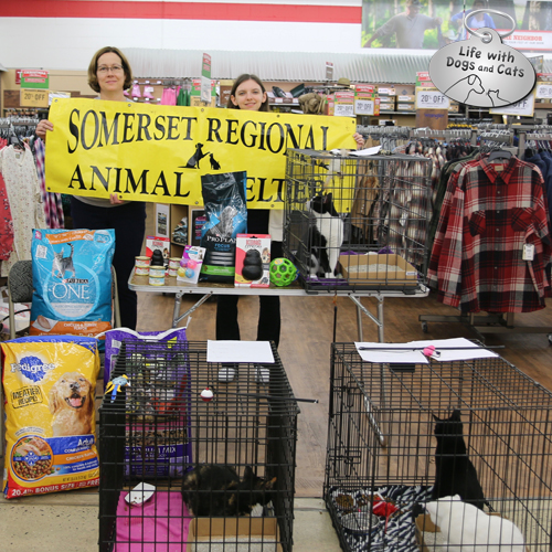 Somerset Regional Animal Shelter and Tractor Supply Company
