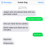 Text from Dog: You can't be too careful