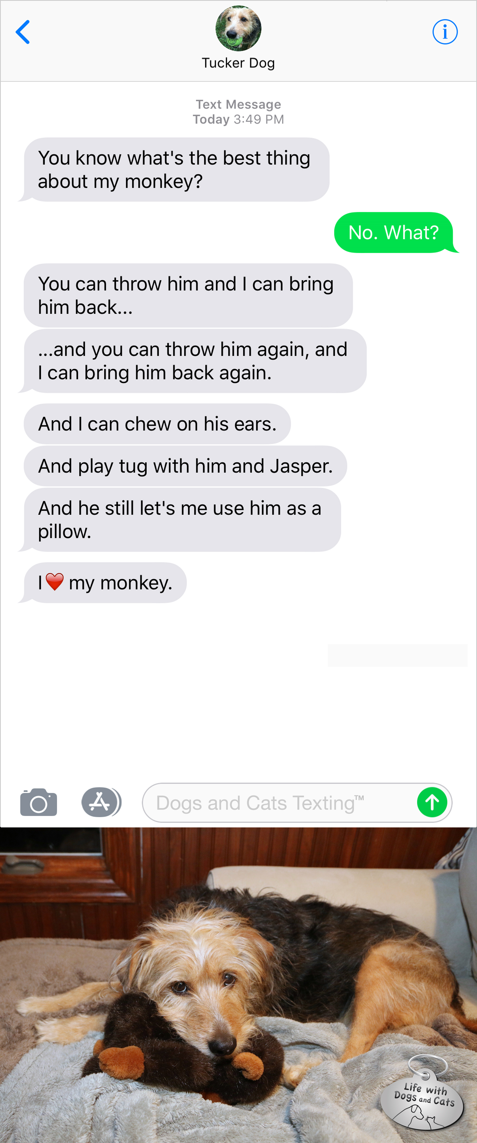 #TextFromDog You know what's the best thing about my monkey? Me: No. What? Dog: You can throw him and I can bring him back... and he still let's me use him as a pillow!