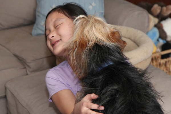 Dogs and doggy kisses are good for kids...but we knew that.