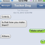 Text from Dog: Dust kittens?