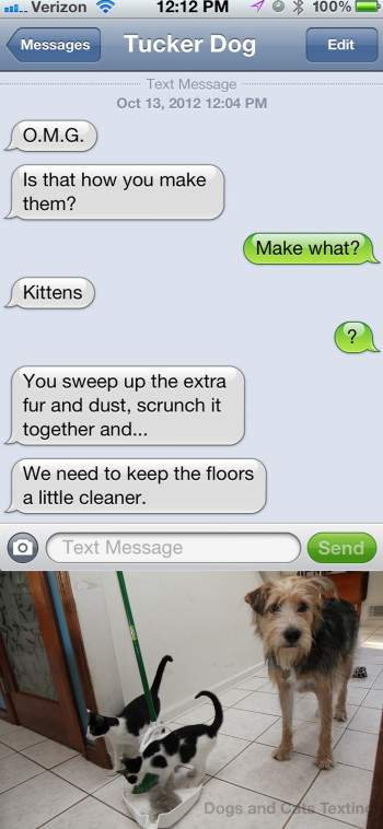 Text from Dog: Is that where kittens come from? I thought there were only dust bunnies...