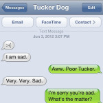 Text from Dog: Sad, Sad Tucker
