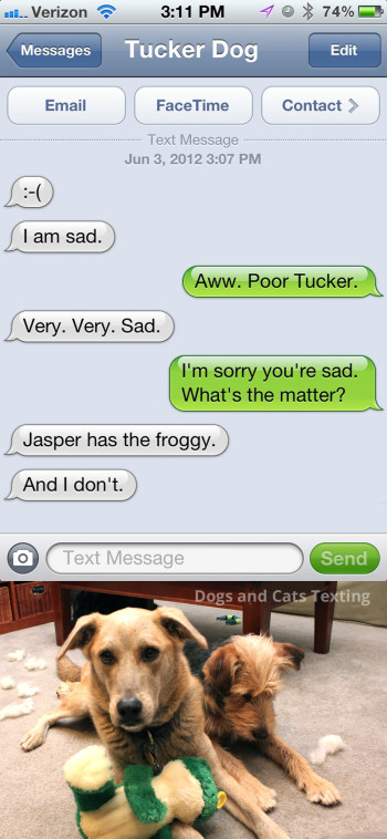 Text from Dog: I am sad. Text from me: Why? Text from dog: Because Jasper has the froggy and I don't.