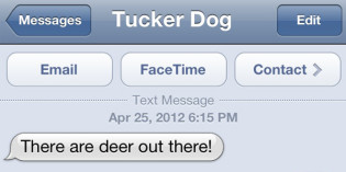 Text from Dog: Oh deer